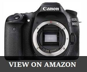 Canon Digital SLR Body EOS 80D
