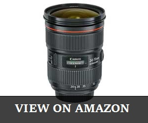 Canon EF 24mm Review