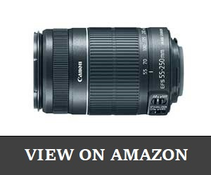 Canon EF-S 55 Review