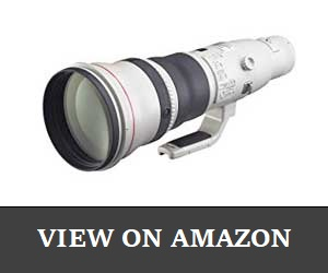 Canon EF Review