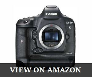 Canon EOS-1DX Mark Review