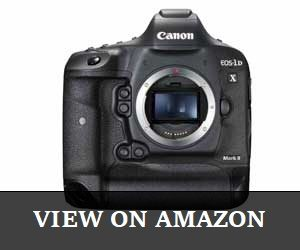 Canon EOS-1DX Mark II Review