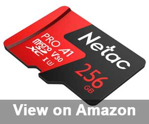 Nesta 256GB Micro SD Card