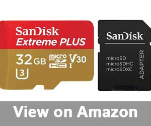 SanDisk Extreme Plus 32GB SD card