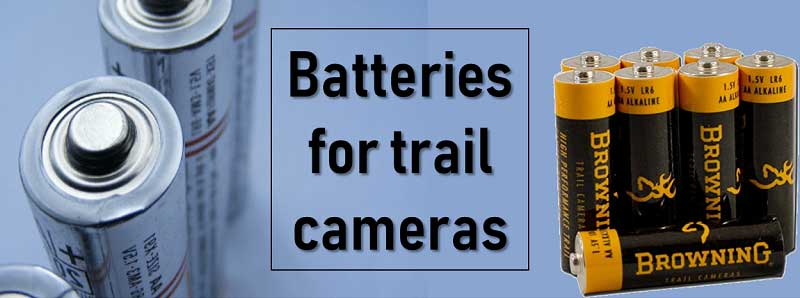 best batteries for trail cameras