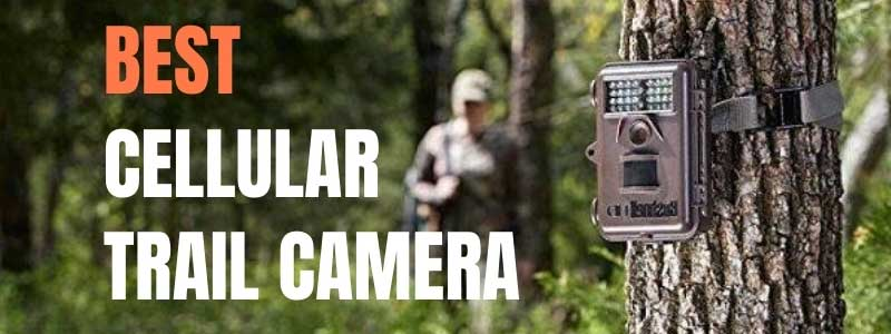 Best Cellular Trail Cameras In 2020: Reviews and Buying Guide